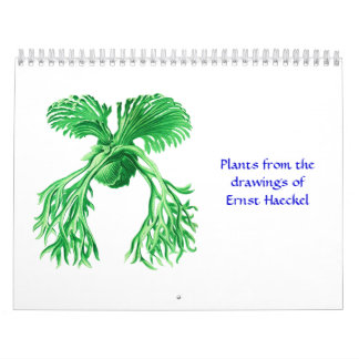 A 1012 calendar of microscopic plants and animals.