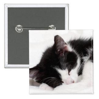 A 9-Week Old Kitten Sleeping (Felis Catus) 2 Inch Square Button
