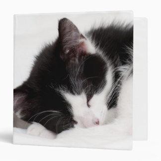 A 9-Week Old Kitten Sleeping (Felis Catus) Binder
