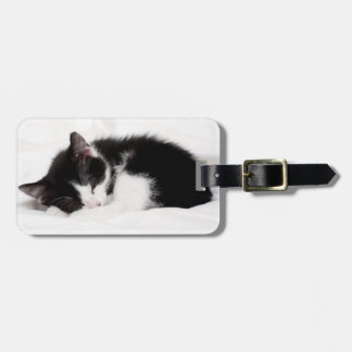 A 9-Week Old Kitten Sleeping (Felis Catus) Luggage Tag