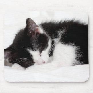 A 9-Week Old Kitten Sleeping (Felis Catus) Mouse Pad