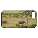 A African Elephant grazing in the fields of the 2 iPhone 5 Cases
