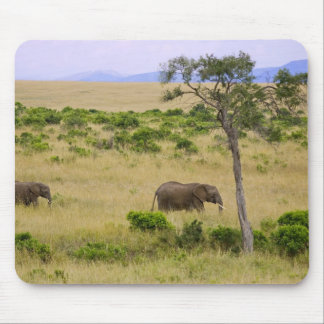 A African Elephant grazing in the fields of the 2 Mouse Pad