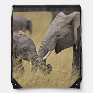 A African Elephant grazing in the fields of the Drawstring Bag