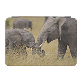 A African Elephant grazing in the fields of the iPad Mini Cover