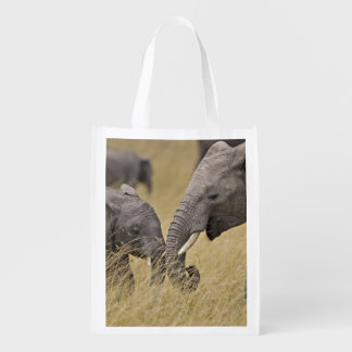 A African Elephant grazing in the fields of the Reusable Grocery Bags