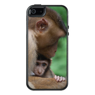 A Baby Macaque And It'S Mother OtterBox iPhone 5/5s/SE Case