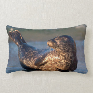 A baby seal lifting it's tail lumbar pillow
