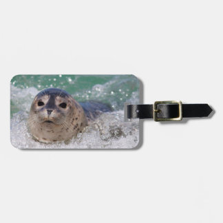 A baby seal surfing luggage tag