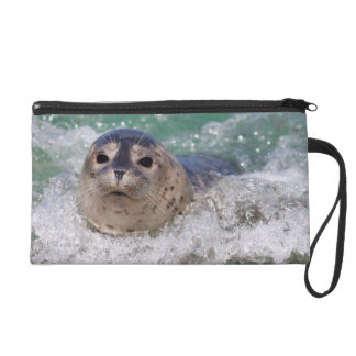 A baby seal surfing wristlet purse