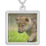 A baby wolf custom jewelry