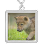 A baby wolf square pendant necklace