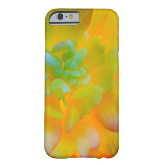 A back-lit, glowing begonia blossom barely there iPhone 6 case