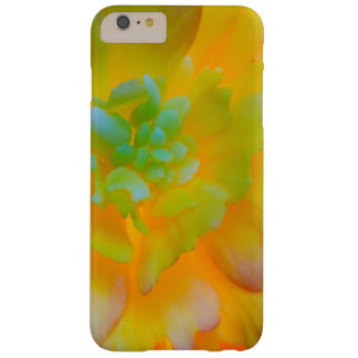 A back-lit, glowing begonia blossom barely there iPhone 6 plus case