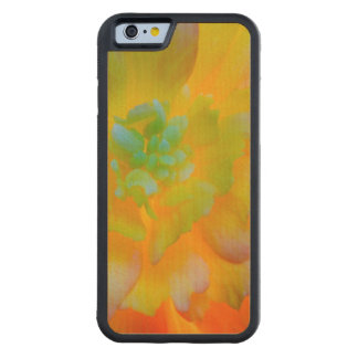 A back-lit, glowing begonia blossom carved maple iPhone 6 bumper case