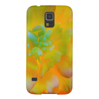 A back-lit, glowing begonia blossom case for galaxy s5