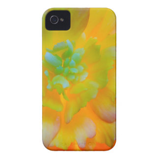 A back-lit, glowing begonia blossom iPhone 4 Case-Mate case