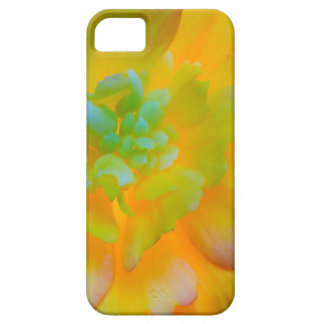 A back-lit, glowing begonia blossom iPhone SE/5/5s case