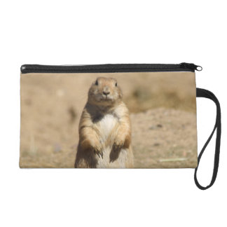 a Bagettes Bag Wristlet - Customized
