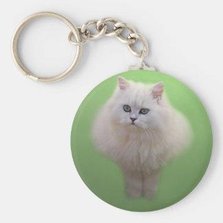 A ball of fluff white kitten key chain