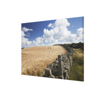 A Barbed Wire Fence Built Along A Stone Fence Canvas Prints