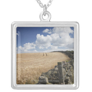 A Barbed Wire Fence Built Along A Stone Fence Silver Plated Necklace