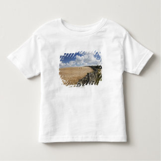 A Barbed Wire Fence Built Along A Stone Fence Tee Shirt