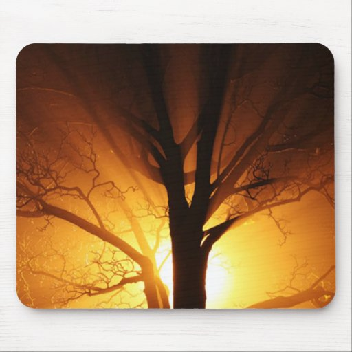 A Bare Tree At Sunset Mouse Pads