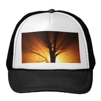 A Bare Tree At Sunset Trucker Hat