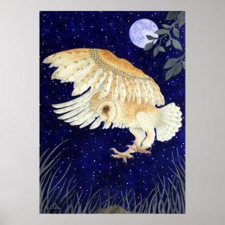 A Barn Owl in flight Poster