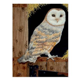 A Barn Owl rests on a barn door Postcard