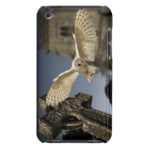 A Barn Owl (Tyto alba) in a graveyard in North Barely There iPod Cover