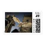 A Barn Owl (Tyto alba) in a graveyard in North Postage Stamp