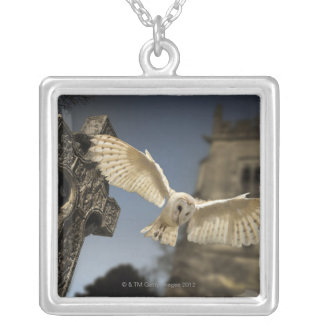 A Barn Owl (Tyto alba) in a graveyard in North Silver Plated Necklace