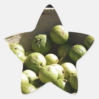 A basket full of guavas star sticker