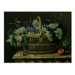 A Basket of Grapes Postcard