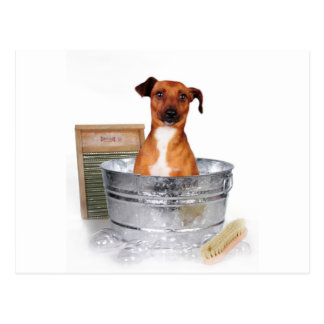 A Bath??? Postcard