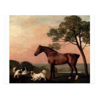 A Bay Hunter With Two Spaniels by George Stubbs Postcard