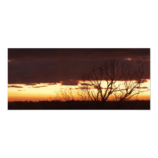 A Bayou Sunset by Leslie Peppers 4x9.25 Paper Invitation Card