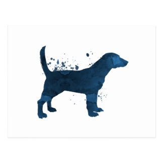 A beagle postcard