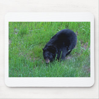 A Bear Over There Mouse Pad