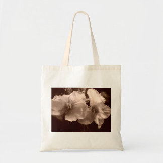A beautiful and very useful bag
