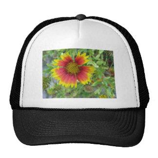 A beautiful blanket flower mesh hats