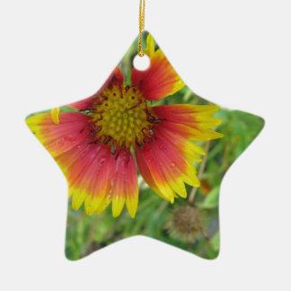 A beautiful blanket flower christmas ornament
