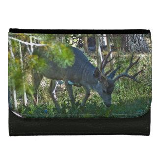 A Beautiful Buck Leather Wallet For Women