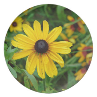 A beautiful close up of a yellow flower dinner plates