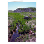 A Beautiful Day Greeting Card