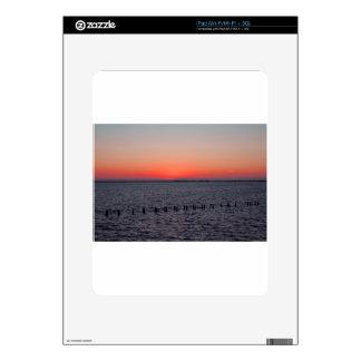 A Beautiful Heist Skins For iPad