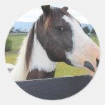 A beautiful horse round sticker