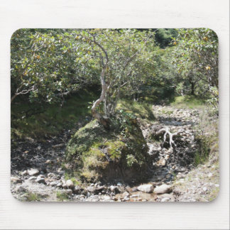 A beautiful image of tranquility and peace mouse pad
